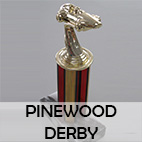 _pinewood-derby