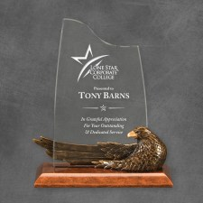 90811-z-9inch-bronze-eagle-resin-21.50