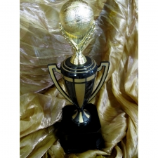 stunning-basketball-award